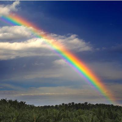 Real Rainbow