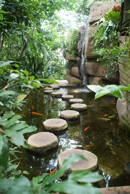 koi pond with stepping stones