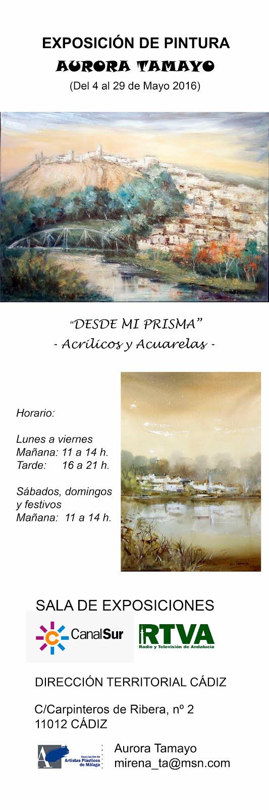 Exposición de Pintura en Cádiz