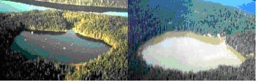 eutrofización de un lago