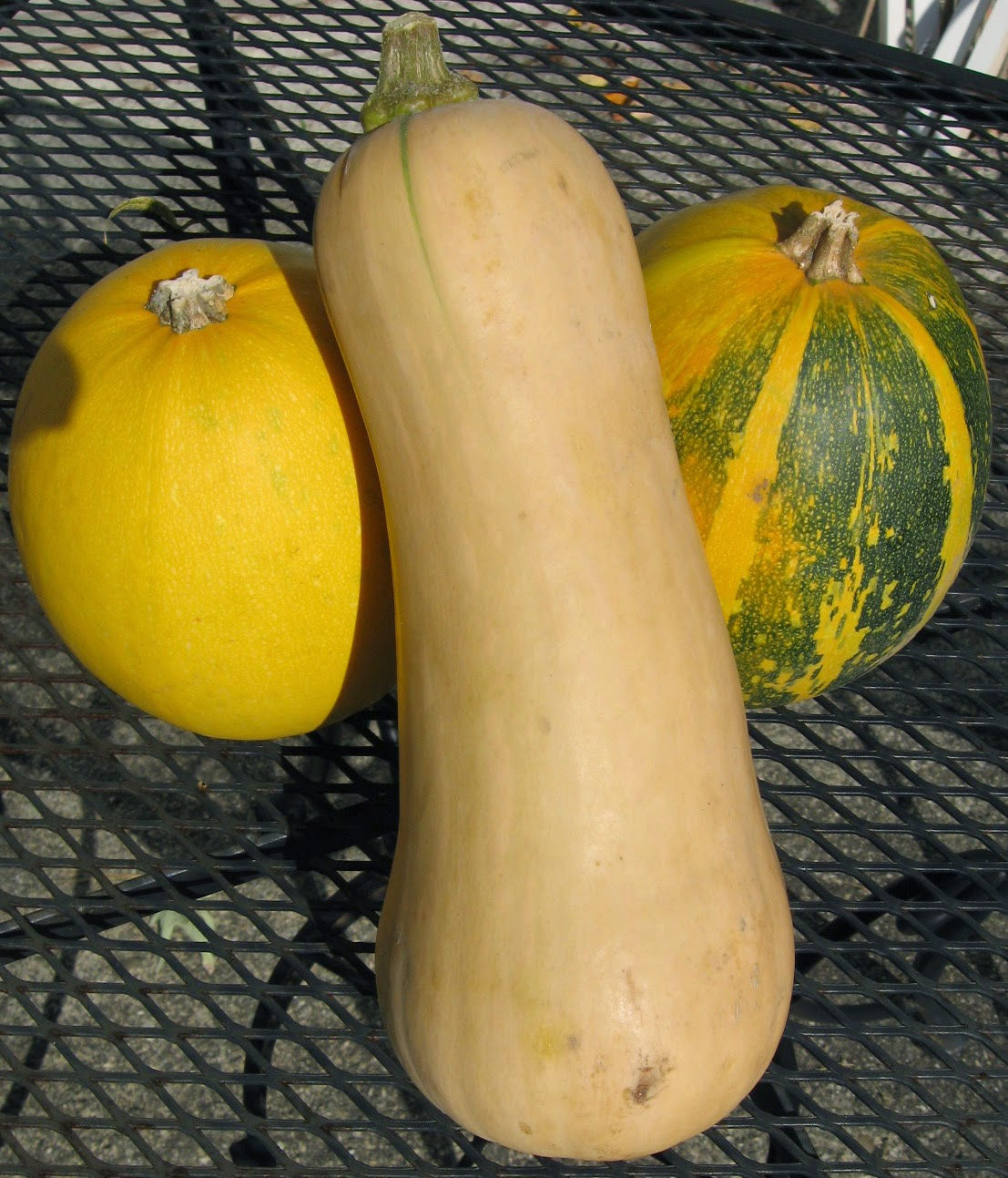 Butternut and Spaghetti Squash
