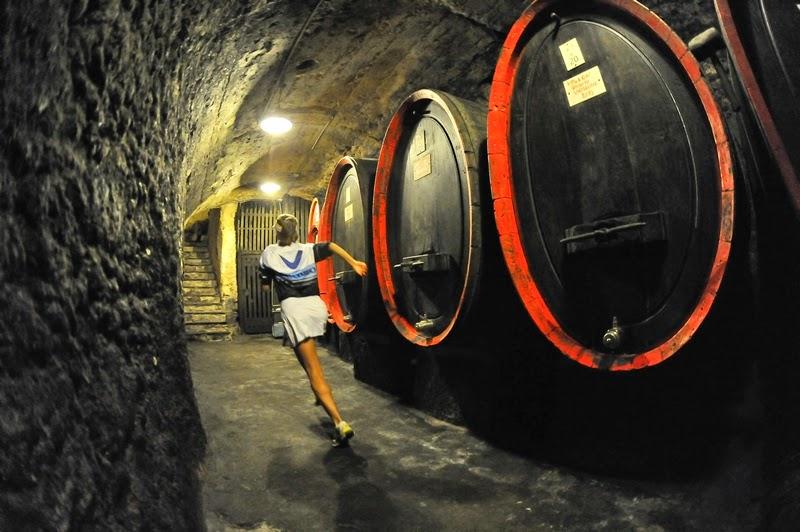 wine trail 2014