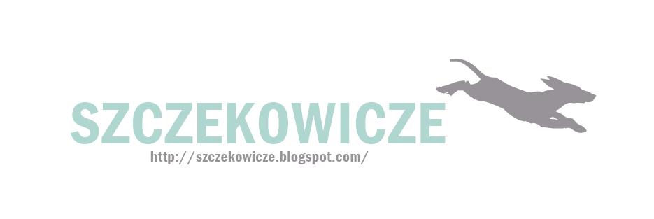 Szczekowicze