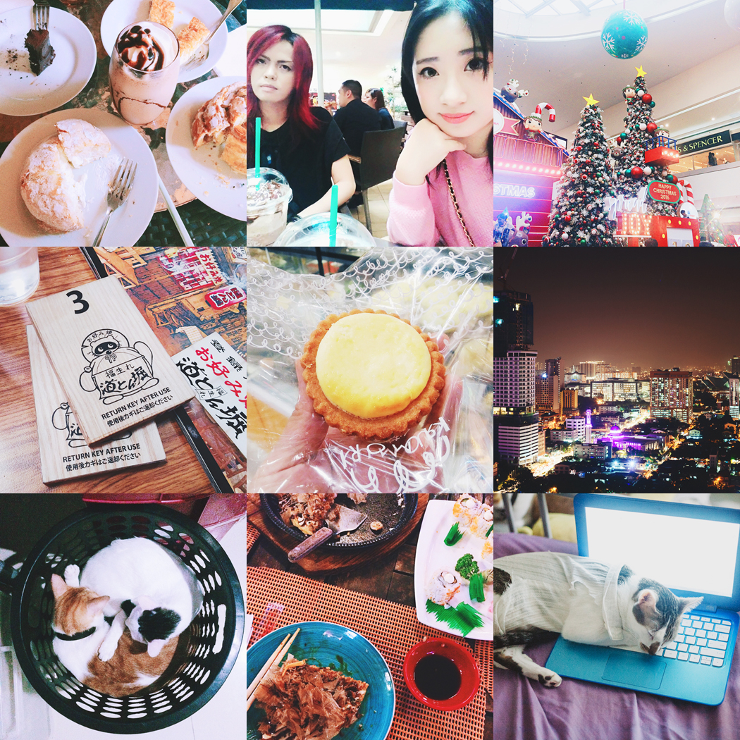 December 2016 photodiary | chainyan.co