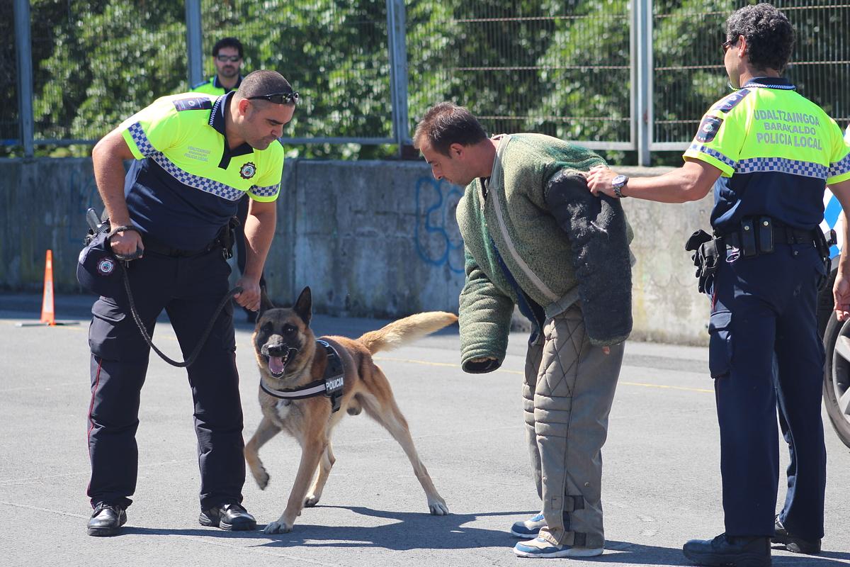 Barakaldo Digital: Los perros de la Policía Municipal muestran sus ...