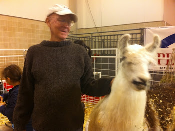 Joe and the LLAMA