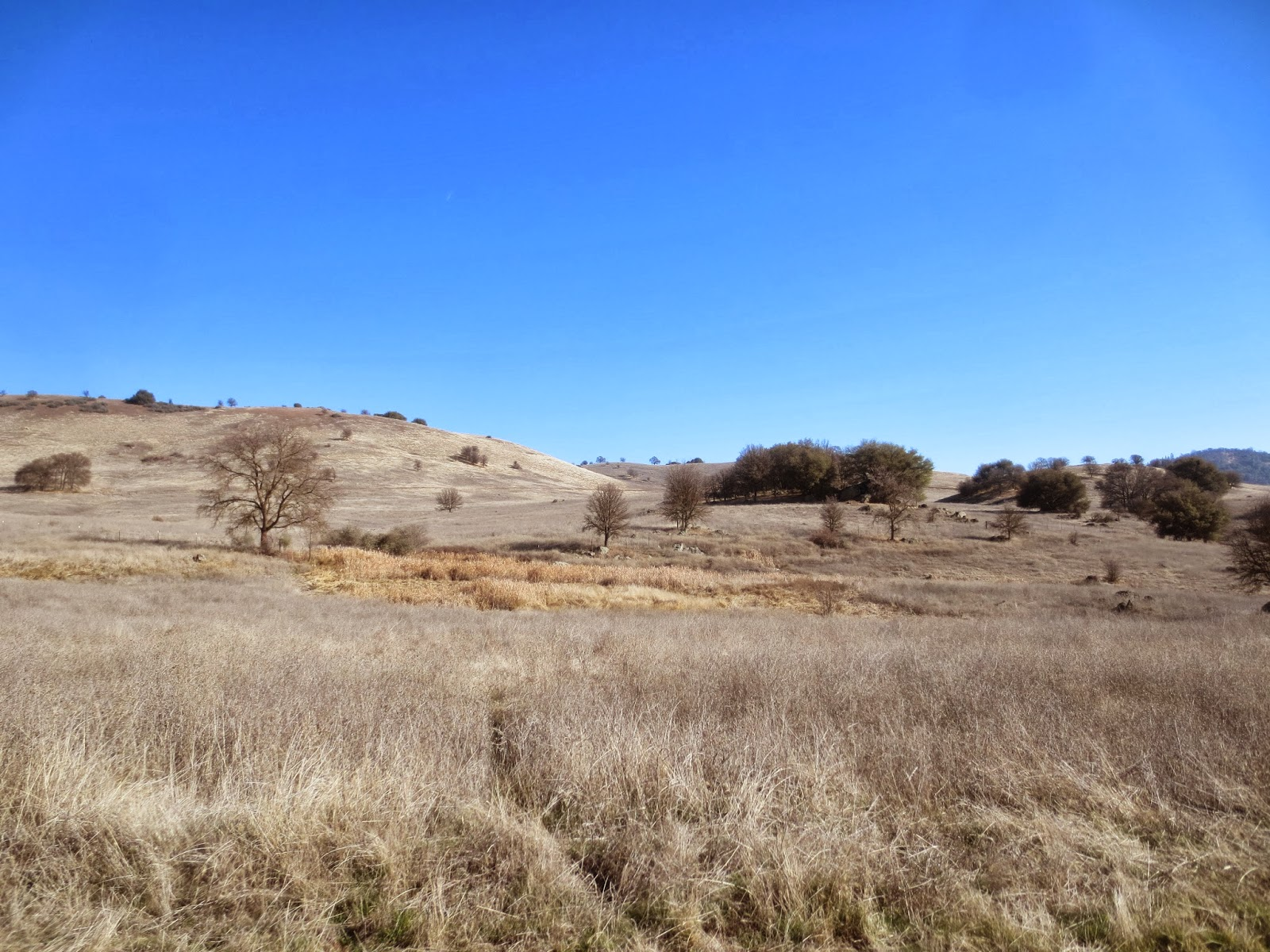Day hikes: Cronan Ranch Regional Trails Park