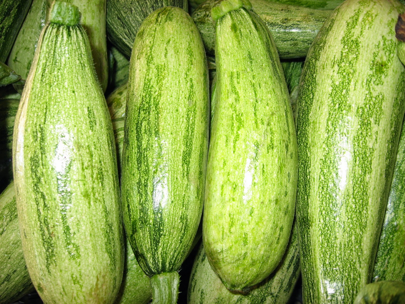 Yet another variety of squash being offered