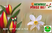 NEWROZ PIROZ BE
