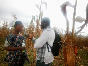 Farmers talk climate change in Ghana