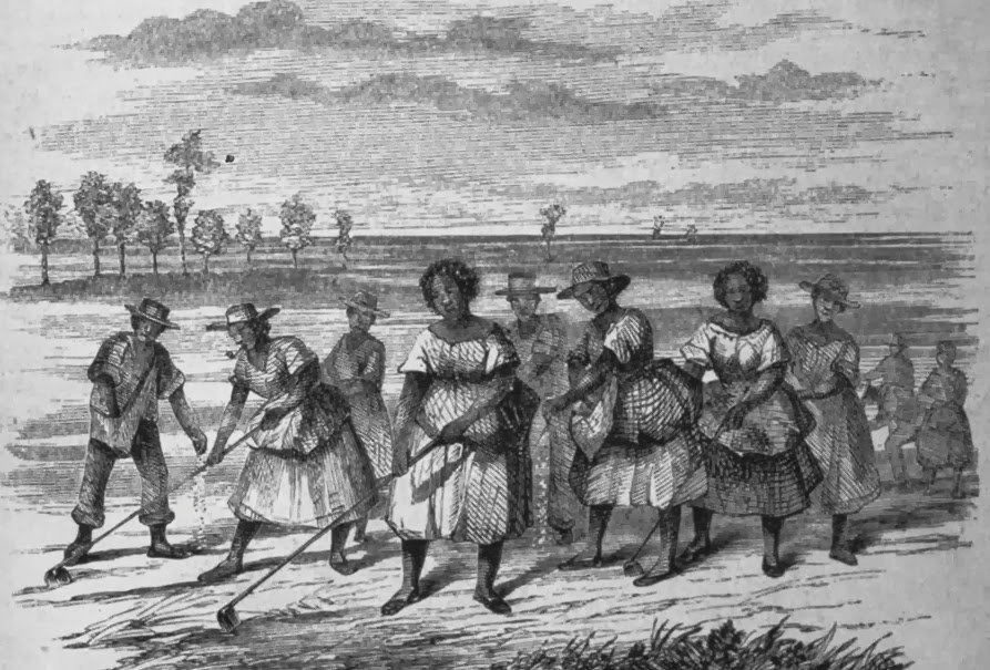 slavery as a backbone of the southern economy in the 19th century Members of congress represented states in which slavery was the backbone of   an economic system that allowed the united states, particularly the southern.