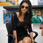 Gabriela Bertante Super Sexy Legs Show At Telugu Movie 'Devudu Chesina Manushulu' Press Meet