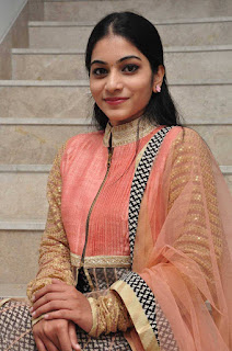 Punarnavi Latest Pictures At Red Alert Movie Audio Launch (3)