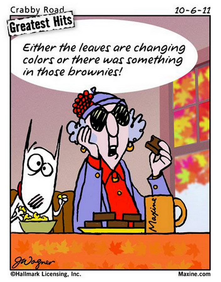 Maxine Cartoons on Aging Maxine Cartoons
