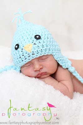 Newborn Photographers in Winston Salem and the Triad NC
