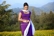 Hari priya photo shoot among yellow folwers-thumbnail-22