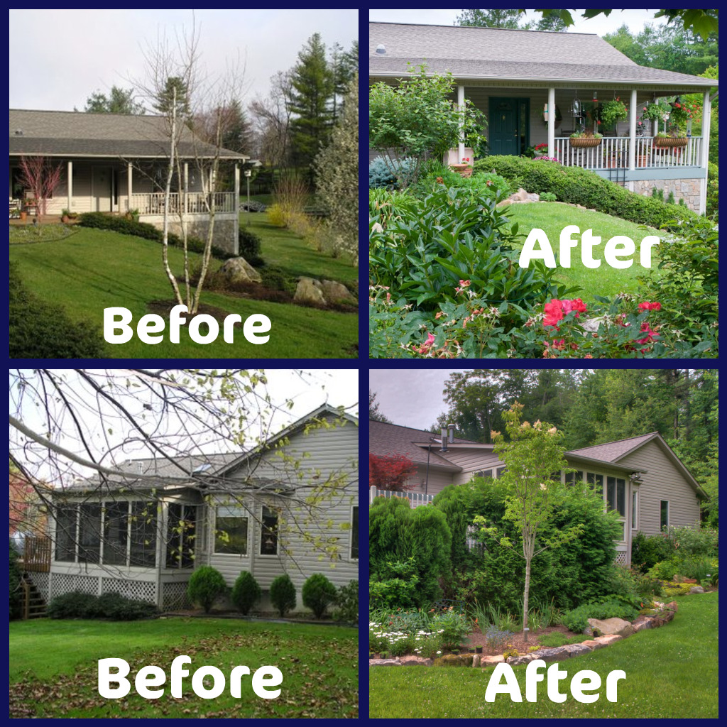 Build a garden share landscaping before and after photos for Garden design ideas before and after