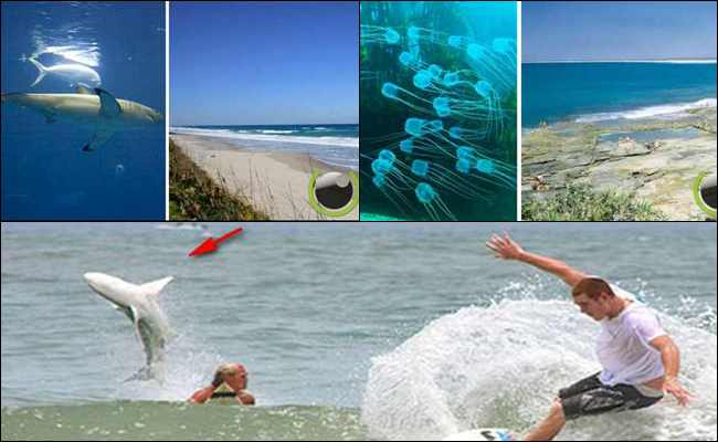 10 Pantai yang paling Mematikan Di Dunia