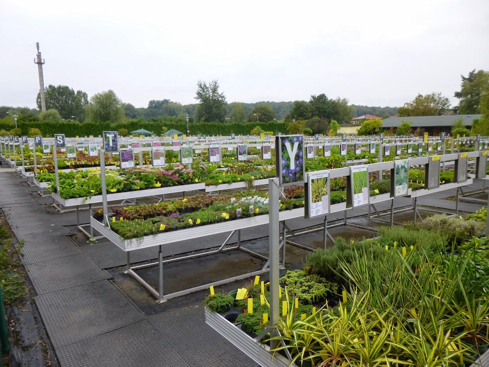 garden of aaron travel report potsdam karl foerster garden