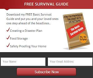 Survival Guide Pdf