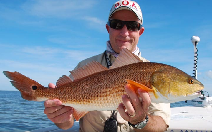 December Mosquito Lagoon Redfish Fishing Report with Capt. Chris Myers