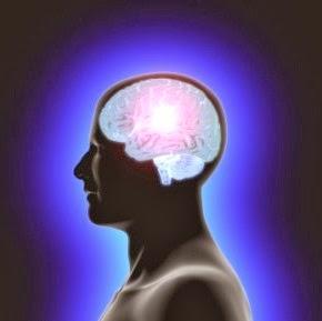 4 Hal Yang Bisa Membuat Orang Cerdas