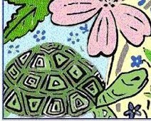 Tortoise Love?