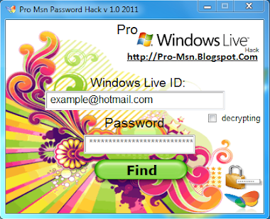 Pro Msn Password Hack v 1.0