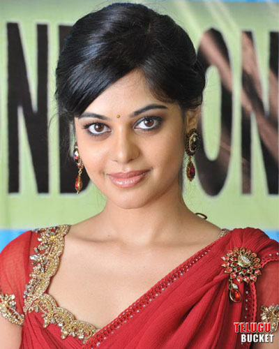 1 - Bindu Madhavi Latest Stills at PZ 50 Days Function