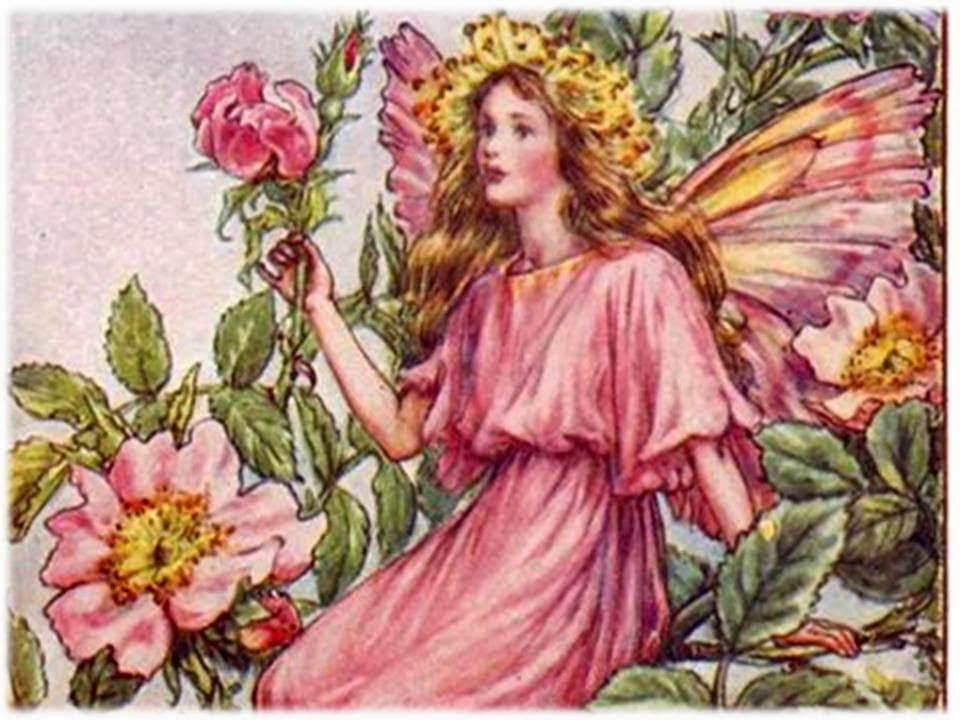 imágenes de flores de hadas Compra lotes baratos de