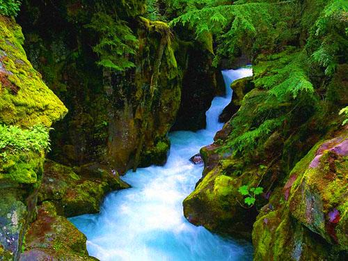 SESIAPA yang mengalirkan air sungai selagi ada orang yang meminumnya