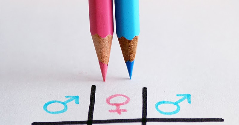 Sociology1110: Gender Inequality (Chapter 12)