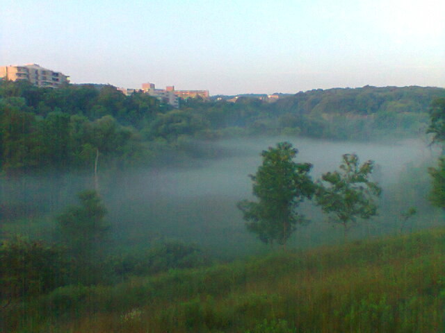 Looking out onto Dundas Valley as the morning dew is evaporating giving a foggy appearance.