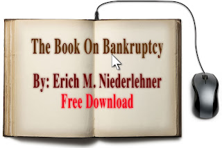 Free ebook on Bankruptcy written by Erich M. Niederlehner, Esquire