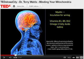 Dr_Terry_Wahls_Minding_Mitochondria