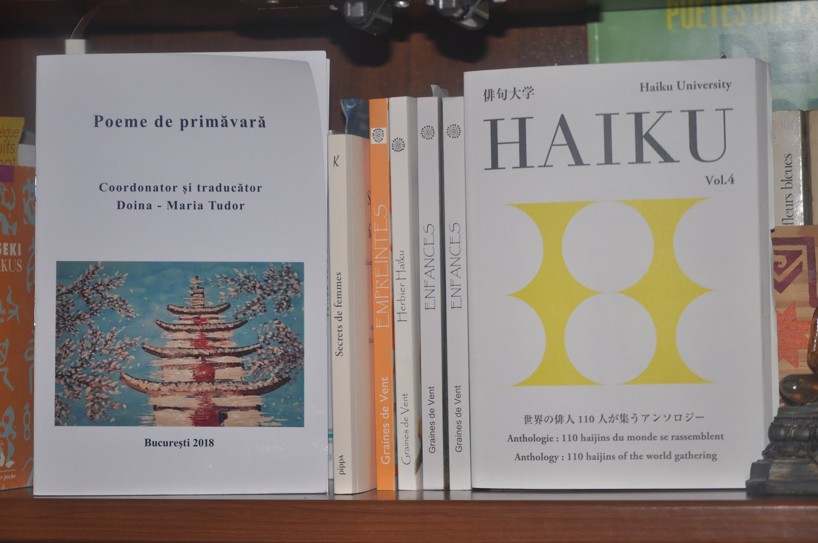 Mes contributions : Anthologies ...