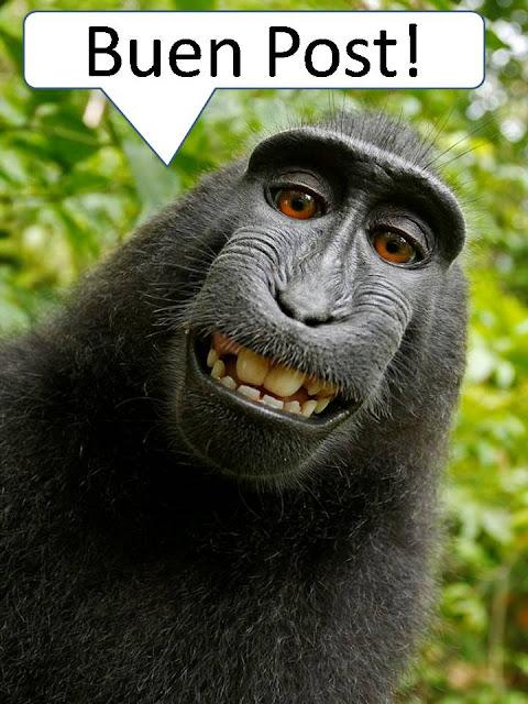 internet gratis en tu celular (colombia)