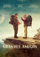 Grandes Amigos (2015)