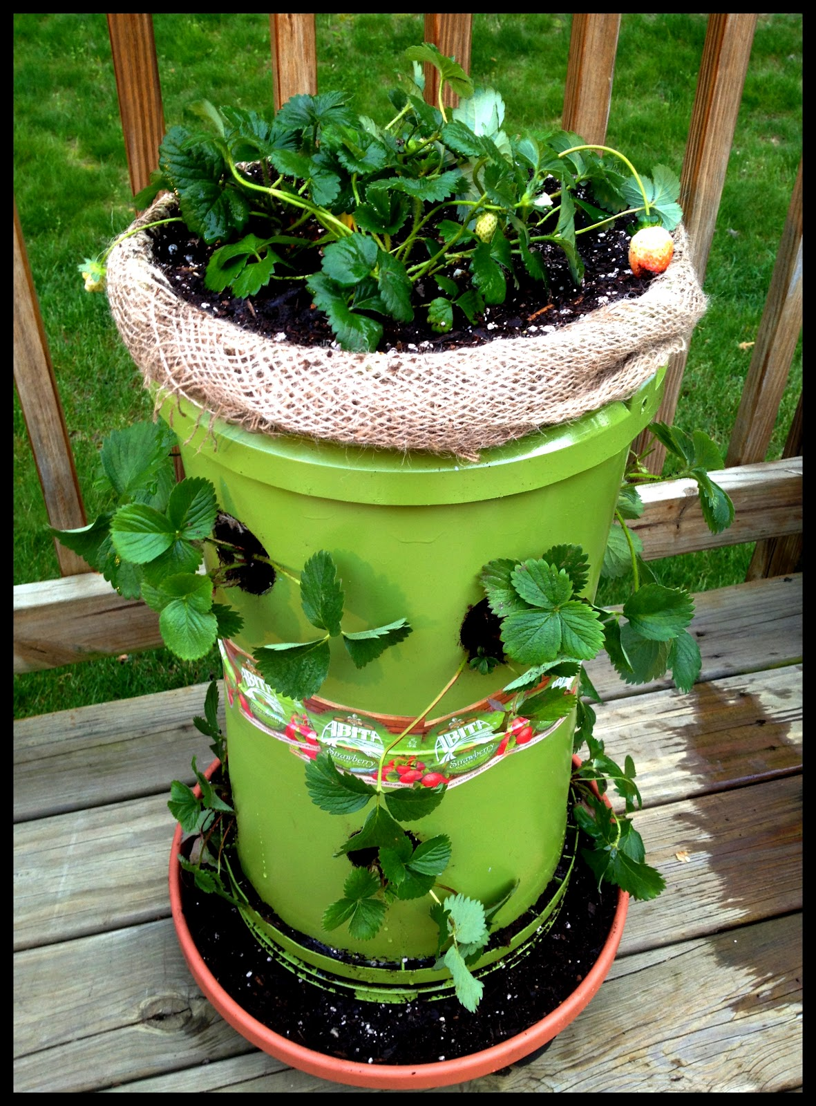 Courtneys Bathtub Gin How To Build Your Own Strawberry Tower