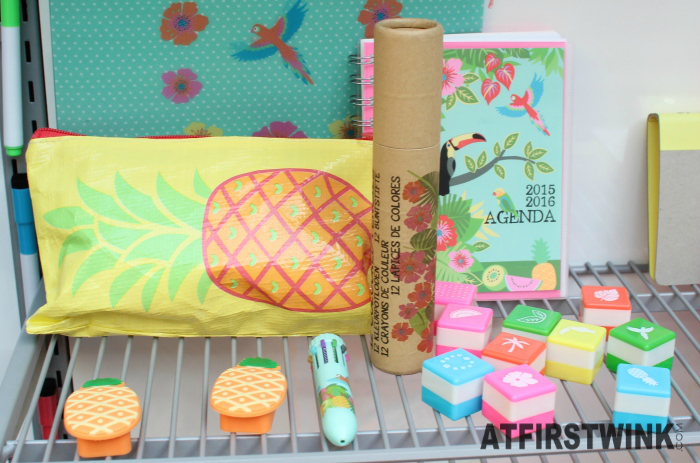 HEMA tropical paradise stationery pineapple stamps