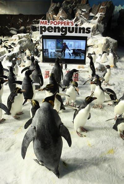 трейлер фильма пингвины мистера поппера