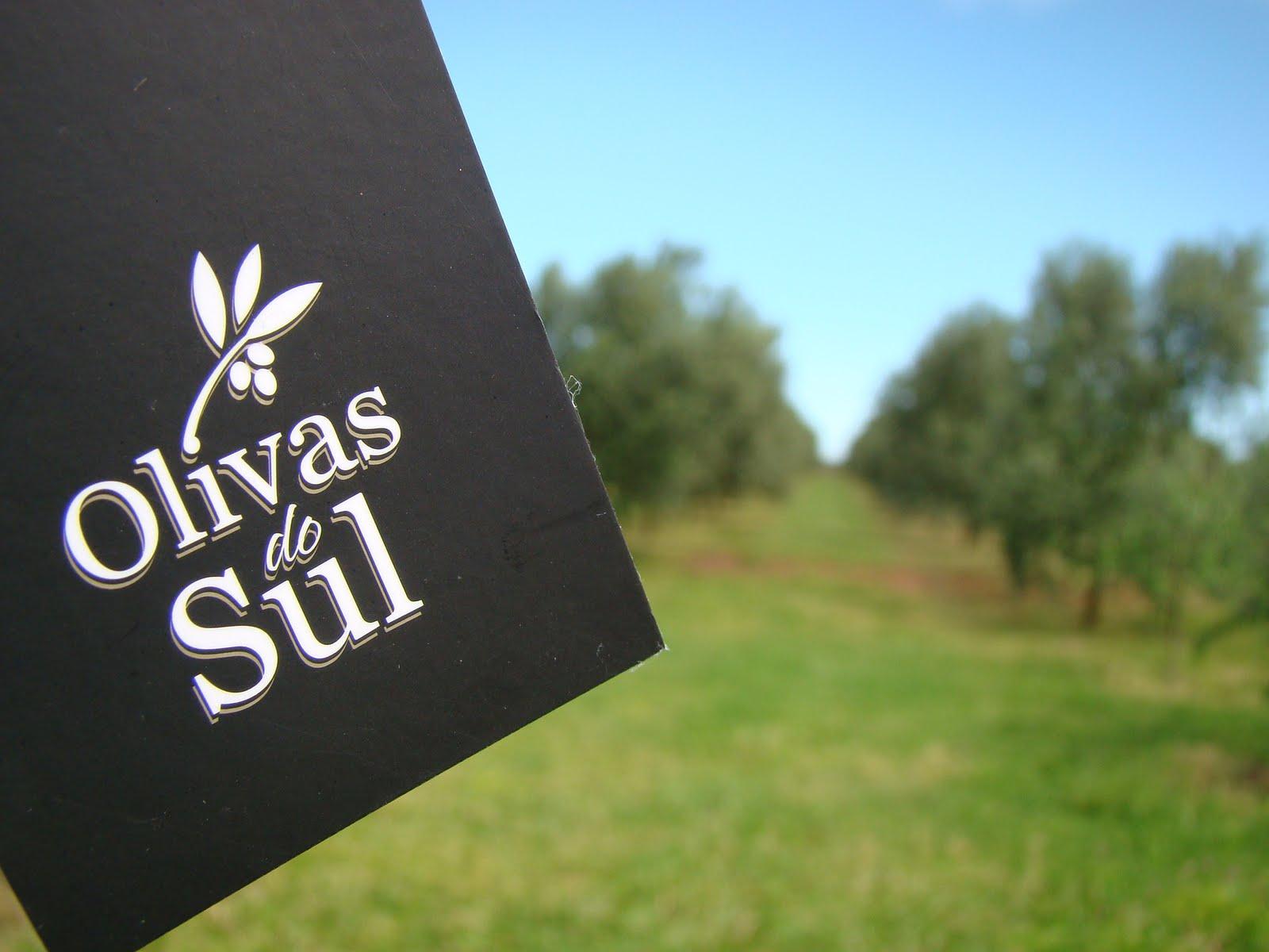 Azeite Olivas do Sul Olivas do Sul o Primeiro