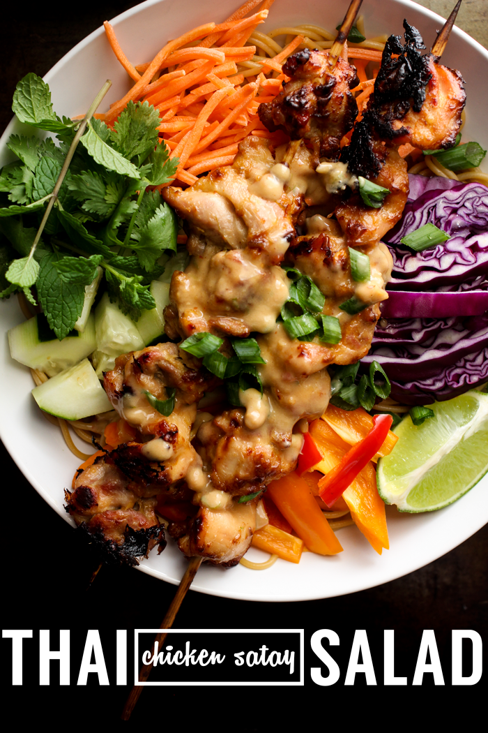 Thai Chicken Satay Noodle Salad with Creamy Coconut Peanut Dressing ...