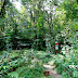 Las Bielański czyli liczy się wnętrze - LXXXVI akcja GTWb