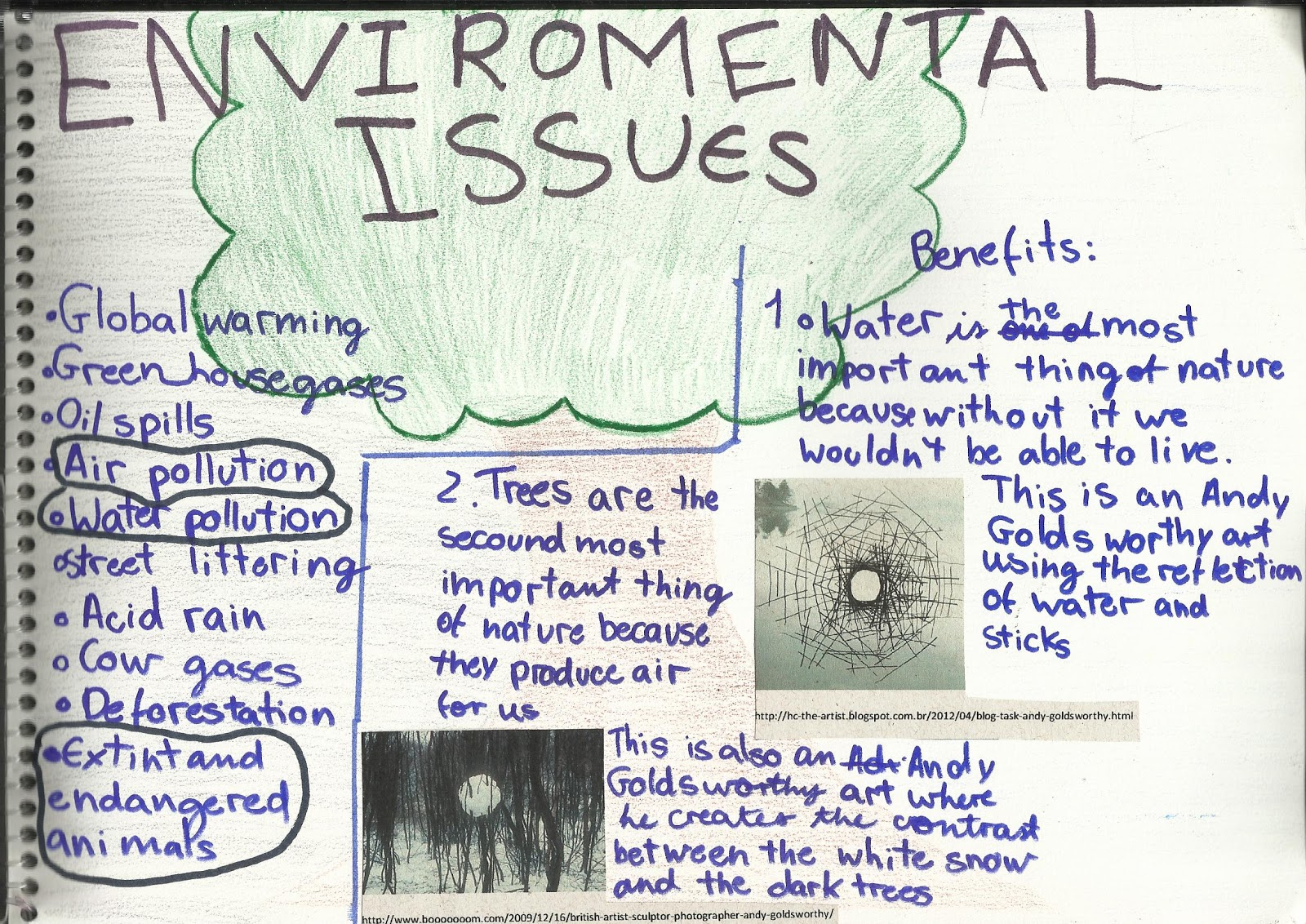 thesis environmental issues