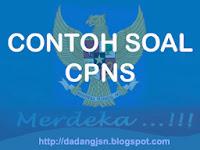 DOWNLOAD CONTOH SOAL CPNS 2013