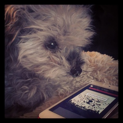 Murchie lays on his fuzzy pillow with his face quite close to the camera and his paws folded under him. In front of him is a white iPod with Tremontaine's beige-tinted cover on its screen. It features black silhouettes of a number of people who climb in a mass of vines that surround an ovular of a woman depicted in profile.