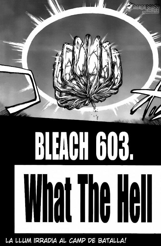 Seireitei no Fansub. Bleach 603 03