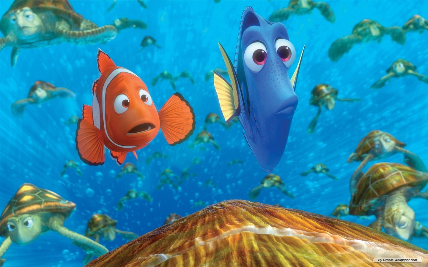 a place for free hd wallpapers desktop wallpapers nemo