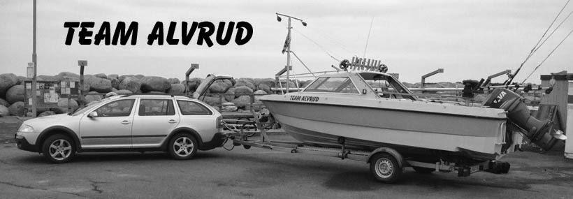 Team Alvrud